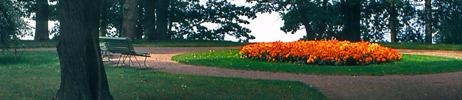 puutarhojen